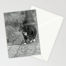 The cat in the alley Stationery Cards