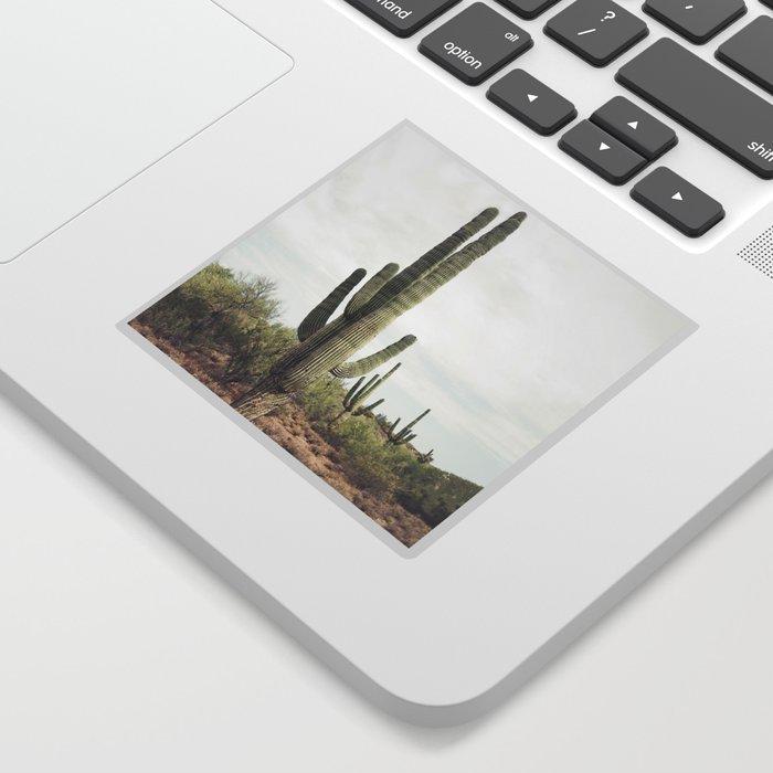 Desert Cactus Sticker