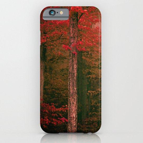 Autumn Fog iPhone & iPod Case