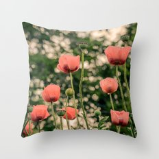 Pink Poppy in late everning light Throw Pillow