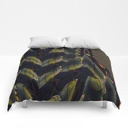 Precipice. Comforters