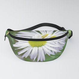 CHAMOMILE FLOWER (1 of 2) Fanny Pack
