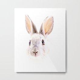 Little Bunny Metal Print