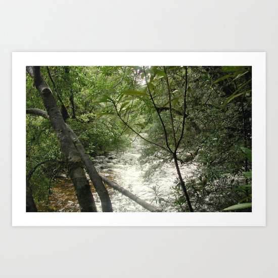 Gordon - Frankin Rivers Art Print
