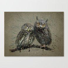 Little owl's background Canvas Print