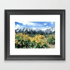 Mountain Spring Framed Art Print