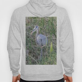 Hello Blue Heron Hoody