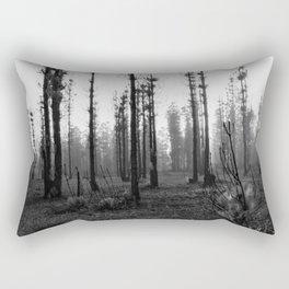 1098 Rectangular Pillow