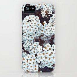 Caress of Venus iPhone Case