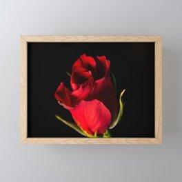 Dark Rose Framed Mini Art Print