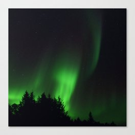 The Northern Lights 04 Canvas Print