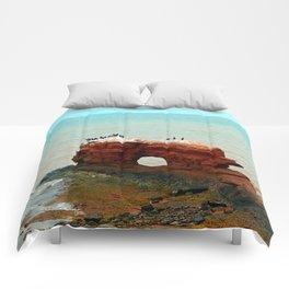 Cape Egmont Sandstone Formation Comforters