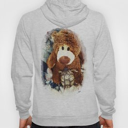 Turtle P. Turtle, Esquire and Buddy Bear Hoody