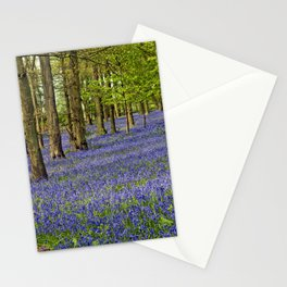 Bluebell Woods Grey's Court Oxfordshire England Stationery Cards