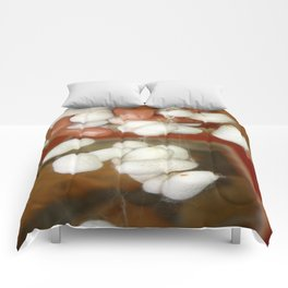 Mullberry Silkworm Cocoons Comforters