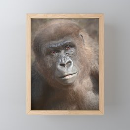 Gorilla Framed Mini Art Print
