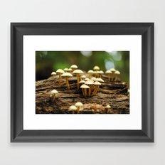 Mini mushrooms Framed Art Print