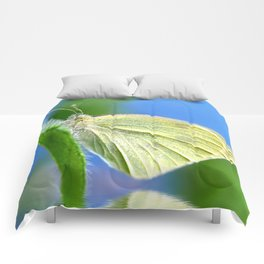 Butterfly 61 Comforters