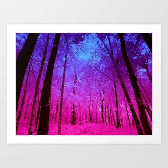 Fuchsia Forest Art Print