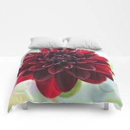 Georgina Comforters