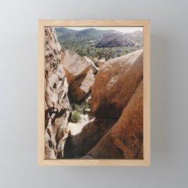 Joshua Tree Framed Mini Art Print