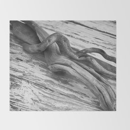 weathered driftwood black and white Throw Blanket