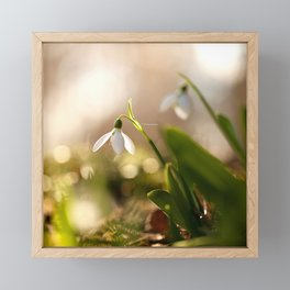You And I Two Snowdrop Flowers #decor #society6 Framed Mini Art Print