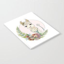 Healthcare Llama Notebook