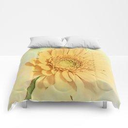 Content Comforters
