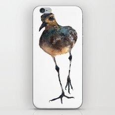 Bird Painting, plover watercolor iPhone & iPod Skin