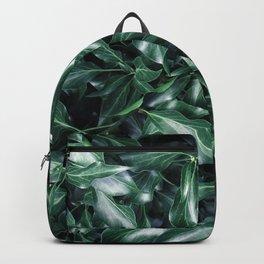 Ivy 01 Backpack
