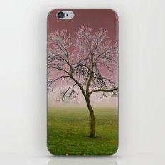 Dreamy iPhone & iPod Skin