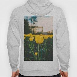 Yellow Tulip Hoody