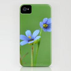 Blue Eyed Grass iPhone (4, 4s) Slim Case