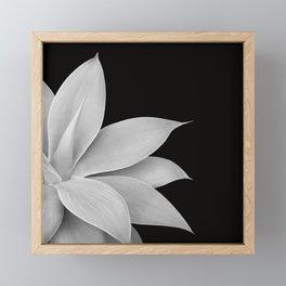Agave Finesse #2 #tropical #decor #art #society6 Framed Mini Art Print