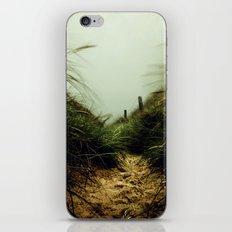 path through the dunes iPhone & iPod Skin