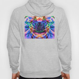 Sir Parker's Binary Fission Hoody