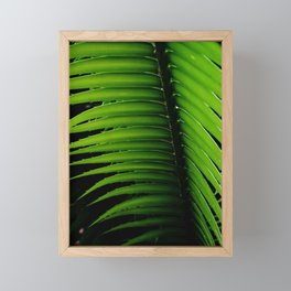 Palm tree leaf - tropical decor Framed Mini Art Print