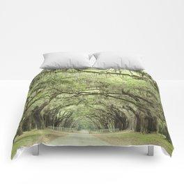 Georgia Oak Alley Comforters