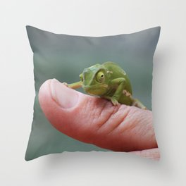 Chameleon cuteness personified Throw Pillow