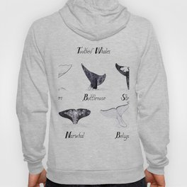 Toothed Whales Hoody