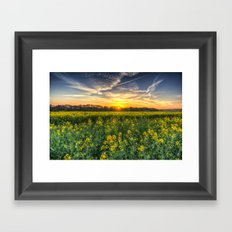 Late Afternoon April Field Framed Art Print