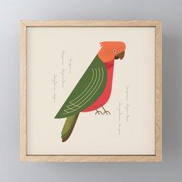 Australian King Parrot, Bird of Australia Framed Mini Art Print