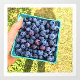 Berry Picking Art Print