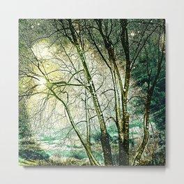 melancholic tree Metal Print