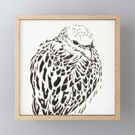 Gyrfalcon (Falcon) Framed Mini Art Print