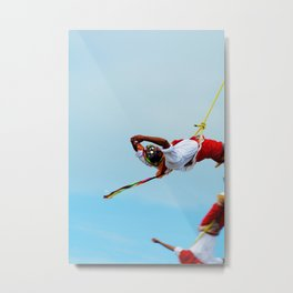 Flying artist collection _03 Metal Print