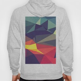 Flash Of Color Hoody