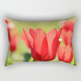 Red tulips in backlight Rectangular Pillow