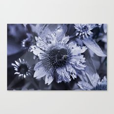 Summer Fun from ETERNAL Canvas Print